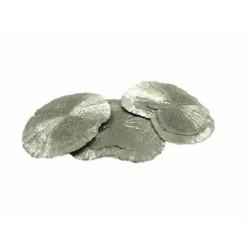 Pyrite plaque